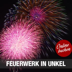 03.09.2016 – Abendfahrt zum Feuerwerk in Unkel