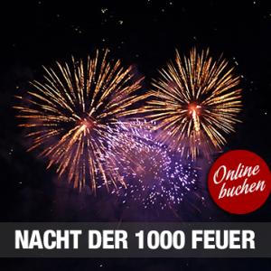08.09.2018 – Nacht der 1000 Feuer in Oberwesel